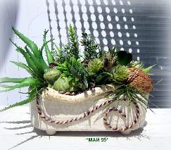 Аранжировка със сукуленти растения