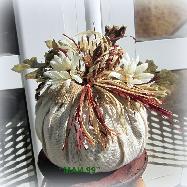 Бяла тиквичка с маргаритки