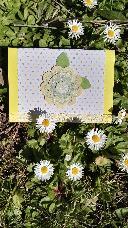 Картички вдъхновени от пролетта