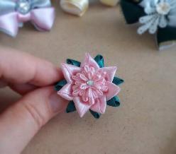 Мини шнола цвете в розово и зелено