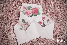 Пликове за различни картички и подаръци