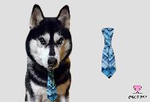 Вратовръзка за куче